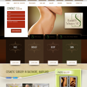 Dr. Ronald H. Schuster website