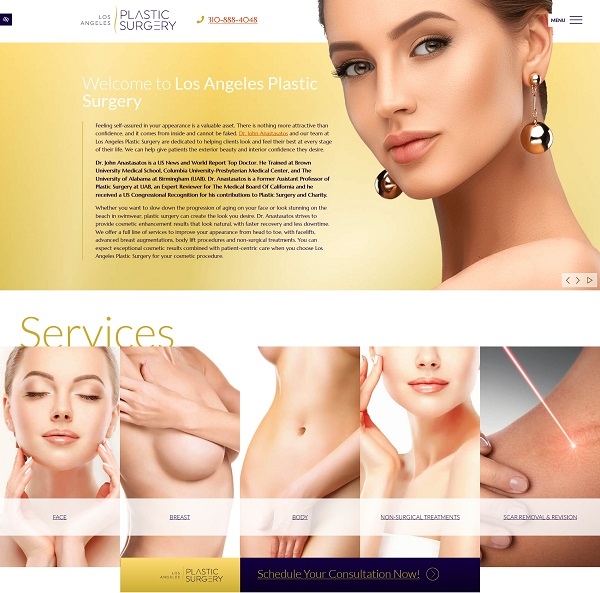 Plastic Surgery – Dr. John Anastasatos website